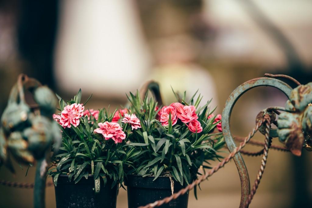 Hochzeitsfotograf_Berlin_Brandenburg_Oranienburg_DS_ 61