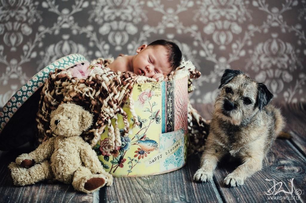Newborn-Fotografie Oranienburg